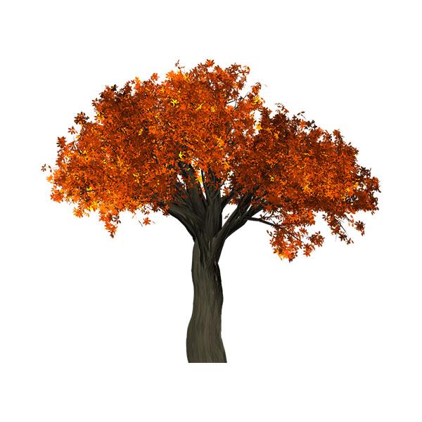 illustrazione albero in Autunno
